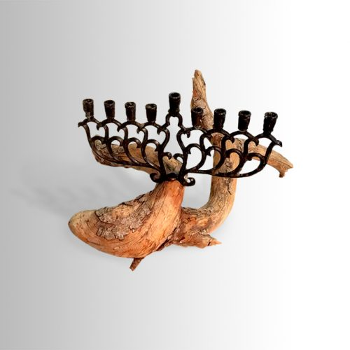Chanuka lamp on branch